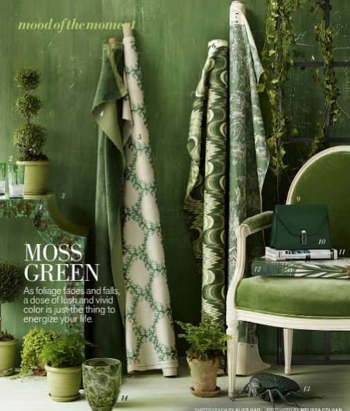 How To Decorate With Green And Rugs